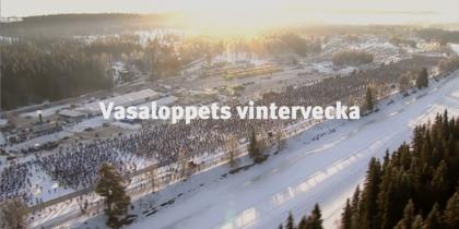 Vinterveckan-Vasaloppet